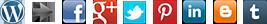 Wordpress to Social Networks