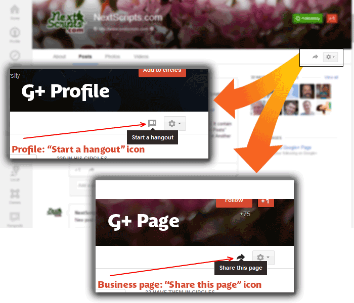 gp-profile_vs_page